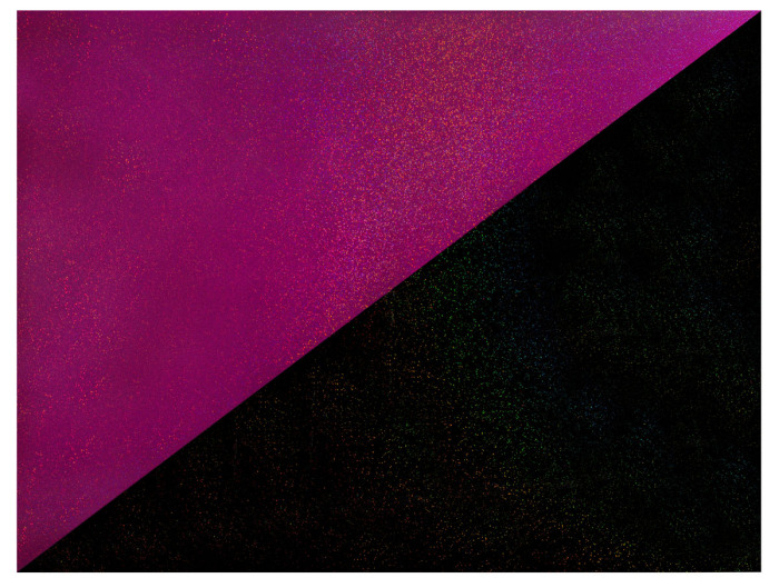 Rúben Ortiz. Bandera mariposa negra, 2014