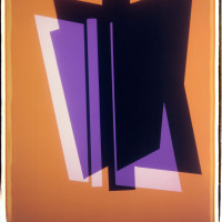 'Yellow and Purple', 2013, Unique Polaroid print, 34 x 22 inches / 86.5 x 56 cm