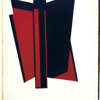 'Red and Black', 2013, Unique Polaroid print,34 x 22 inches / 86.5 x 56 cm