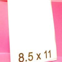 Pink Frame Acrylic
