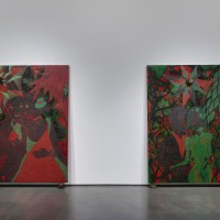 Installation view: Chris Ofili: Night and Day, Aspen Art Museum, 2015. From left: Afro Red Web, 2002-2003; Afro Green, 2005-2008. Photo: Tony Prikryl. All works © Chris Ofili. Courtesy the artist, David Zwirner, New York/London and Victoria Miro, London.