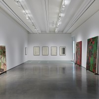 Installation view: Chris Ofili: Night and Day, Aspen Art Museum, 2015. Photo: Tony Prikryl. All works © Chris Ofili. Courtesy the artist, David Zwirner, New York/London and Victoria Miro, London.