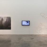 Mirando la flor, group show, Sicardi Gallery, Houston. Image via: sicardi.com