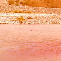 Unión por la Cultura (UNAC), Photo documentation of a collective intervention on March 11, 1981, Mapocho River, Chile (Documentación fotográfica de una intervención colectiva, 11 de marzo 1980). Vintage photograph. 27 x 24 cm (10.6 x 9.4 in.) framed. Courtesy of Virginia Errázuriz (Taller de Artes Visuales).