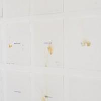 Wilson Díaz, Sementerio [Sementery], 1995-96 - 2016. Semen, lapicero y lápiz sobre papel [Semen, pen and pencil on paper]. Dimensiones variables [variable dimensions]. Cortesía/ Courtesy: TEOR/éTica. Crédito de la foto/ Photo credit: Daniela Morales L.