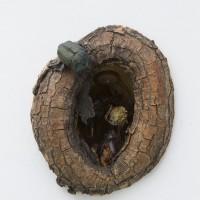 Un agujero en la pared, 2016. Madera, masilla epoxi, insectos. Cortesía de Big Sur, Buenos Aires.
