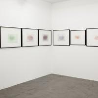 Sin título, 2016. Monocopia. Dimensiones variables. Cortesía de Ruth Benzacar Galería de Arte, Buenos Aires.