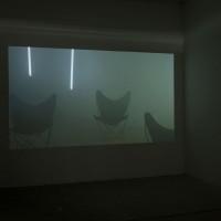 """Exhibition view: Exilio, 2016. Video. Duration: 15' 19"""". Courtesy: Galería Isla Flotante / Photo credit: Diego Spivacow."""