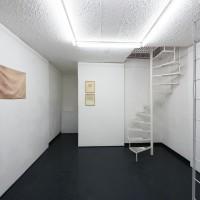 Installation view. Courtesy of Galería Mascota. Photo credit: PJ Rountree