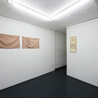 Installation view. Courtesy of Galería Mascota. Photo credit: PJ Rountree