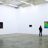 Vista de la exposición Mercados felices de Cecilia Barreto, 2016. Cortesía y crédito de la foto: Galería Luis Adelantado.