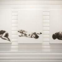 Albertine Stahl, Una función difusa, 2016. Carboncillo y tinta china sobre canvas. 3 piezas de 75 x 100 cm c/u. Cortesía: TEOR/éTica. Crédito de la foto: Daniela Morales L.