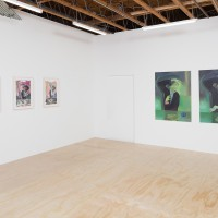 Jill Mulleady, This Mortal Coil. Installation View. Freedman Fitzpatrick, Los Angeles. Jan 15 – Feb 25, 2017. Courtesy of the artist and Freedman Fitzpatrick, Los Angeles. Photo: Michael Underwood.