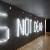 Boris Achour, TITLE ('s not dead), 2016. Luces fluorescentes / fluorescent fixtures. Cortesía de Museo Experimental el Eco. Fotografía: Rodrigo Valero Puertas.