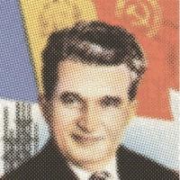 Nicolae, 2016. Lápices de colores sobre papel. 29 x 31.5 cm.
