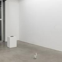 Exhibition view, 2016. Courtesy of Galeria Luisa Strina, São Paulo. Photo: Edouard Fraipont.