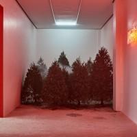 Vista de sala: (al fondo) Ver la madera por el árbol y Jippies Asquerosos por Willy Kautz. Cortesía: El cuarto de máquinas. Crédito de la foto: El cuarto de máquinas.