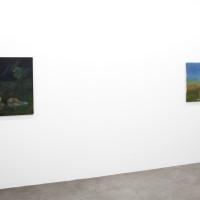 Vista de instalación (de izquierda a derecha): Santiago García Sáenz, Sin título, 1996. Óleo sobre óleo. 79,6 x 95 cm; Santiago García Sáenz. Sin título, 2005. Óleo sobre tela. 66 x 110 cm. Cortesía de Hache Galería, Buenos Aires.