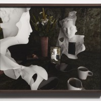 Rhonda Holberton, Still Life (vanitas), 2017. Archival Pigment Print. 19 x 23 inches. Courtesy: CULT Aimee Friberg Exhibitions. Photo credit: John Wilson White.