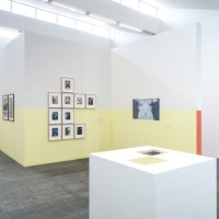 Exhibition View, Marius de Zayas. Photo by Cary Whittier.
