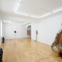 Vista de instalación, 2017. Cortesía de la artista, Lodos, Ciudad de México y ChertLüdde, Berlín. Fotografía: PJ Rountree.