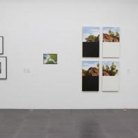 Vista de instalación, 2016-2017. Cortesía de los artistas y Fundación CALOSA, Irapuato. Fotografía: Ana Blanco