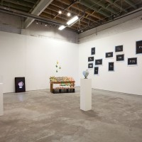 Installation view of Detroit Affinities: Adriana Martínez, MOCAD 2017. Courtesy MOCAD and the artist.