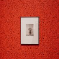 Mathieu Kleyebe Abonnenc, Inventario de objetos africanos de la colección de Émile Abonnenc, Moyen-Ogoué, Gabon, 1977, heliograbados; Incest Fears Insect, 2014/2016, papel de colgadura. Cortesía Museo de Arte Moderno de Medellín.