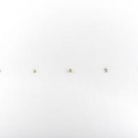 Lucia Elena Prusa, Antibody, 2017. Bronce. 1 x 1.5 x 0.5 cm. Cortesía: Travesía Cuatro. Crédito de la foto: Samantha Cendejas.