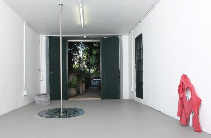 5 +Installation5_ANTIBODY_Lucia Elena Prusa