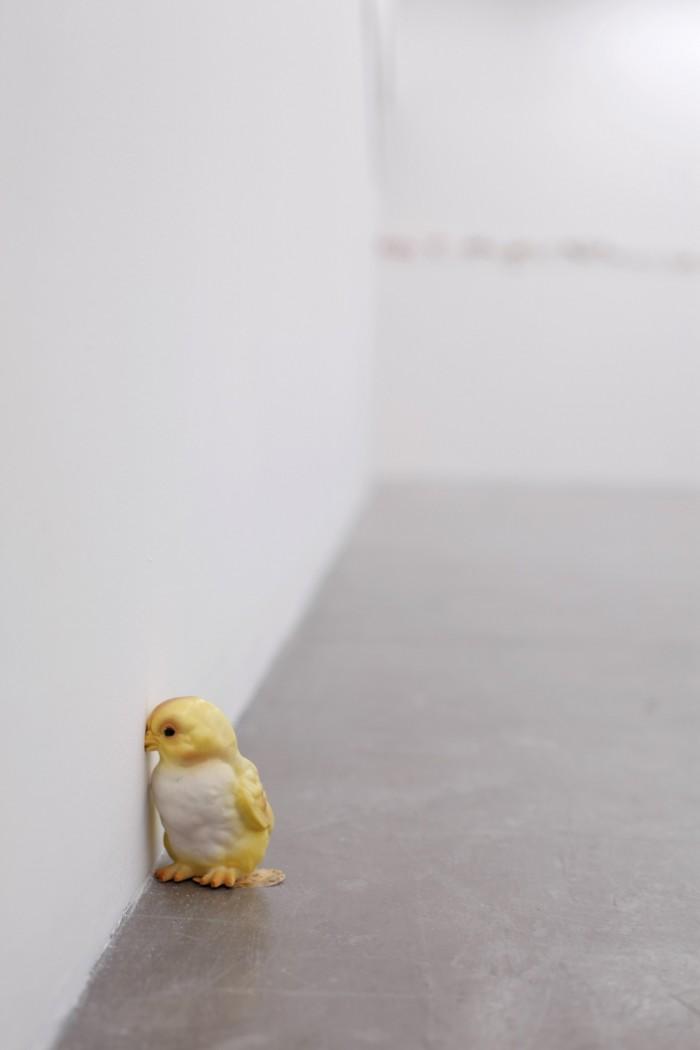 Catalina Schliebener. Growing Sideways, curaduría John Chaich, Hache Galería, Buenos Aires, Argentina, 2017_12