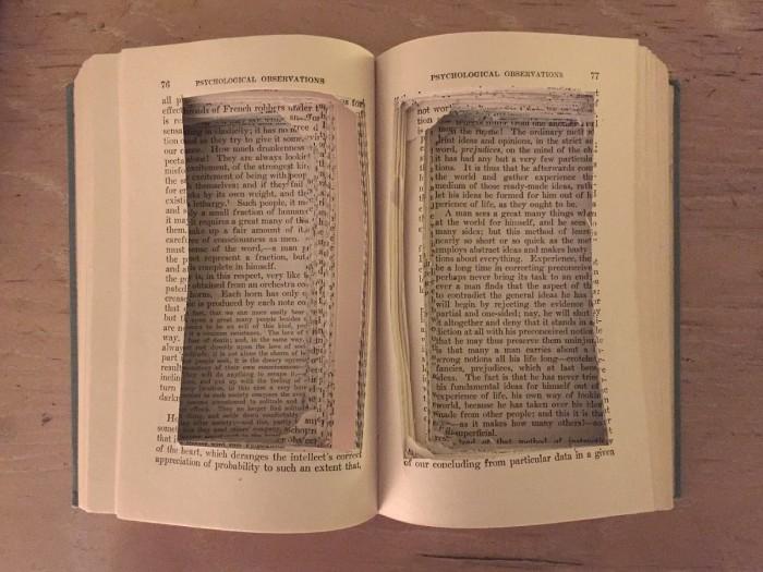 Libro_vacio