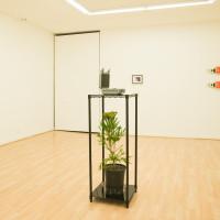 Luca Nino Antonucci. Installation view, Imago, 2017. Courtesy: City Limits