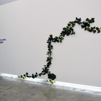 Vista de instalación: Casey Jane Ellison, Discovery, 2017. Cortesía de Anonymous Gallery, Ciudad de México. Foto: Tomás Pérez.