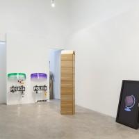 Vista general. Obras de Adriana Martinez, Mariana Murcia y Juan Pelaez. Cortesía de CARNE