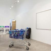 Vista general. Obras de Santiago Pinyol, Adriana Martinez, Mariana Murcia y Juan Pelaez. Cortesía de CARNE