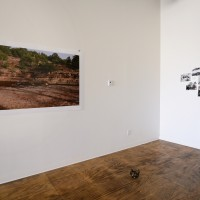 Installation view (from left to right): Local Fire #03 (Golf ), 2017. 66 x 44 in; Mood Board #07, 2017. 5 unique photographies & one handwritten text. Courtesy of the artist.