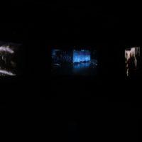 Vista de instalación. Verónica Wiese, Anamnesis, 2017. Cortesía de Ginsberg Galería