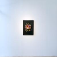 Vega, 2017. Archival pigment print. 28