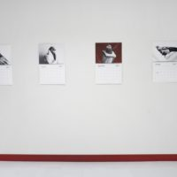 Amalia Ulman, Intolerancia, 2017. Vista de instalación. Cortesía de Barro, Buenos Aires