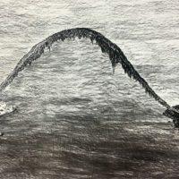 Matías Duville, Sin título, 2007. Carbonilla sobre papel. 150 x 288 cm. Cortesía de Revolver Galería