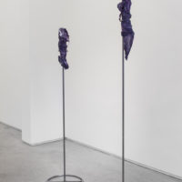 Felipe Meres, The Telomeric Cut. Installation view. Courtesy of the artist.