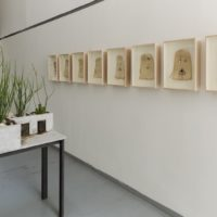 Installation view. Diego Pérez, The Future Belongs to Philophotology. Courtesy of Galería Alterna, Mexico City