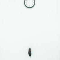 Ángel Poyón, Día verde, 2008. Reloj y zapato. Medidas variables. Cortesía de Km 0.2