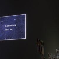 CUDS (Colectivo Universitario de Disidencia Sexual), Los maracos del 73, un archivo precario, 2017. Imagen cortesía del Museo de la Solidaridad Salvador Allende.