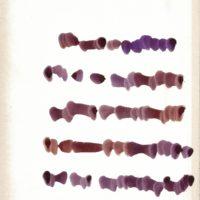 Mirtha-Dermisache, Sin título. Texto, ca. 1970. Tinta sobre papel.