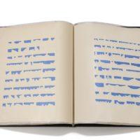 Mirtha Dermisache, Libro Nº 61971. 25 grafismos 18 páginas. Colección MALBA.
