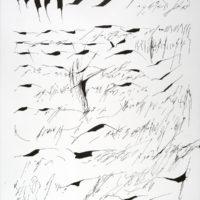 Mirtha Dermisache, Nueve newsletters un reportaje, 2003. Colección MALBA.