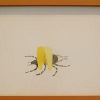 Luz Lizarazo, De la serie Animales de poder, 2017. Acuarela, lápiz sobre papel. 26,5 x 36 cm. Imagen cortesía de SGR Galería