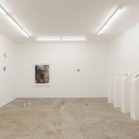 "Installation view (Radamés ""Juni"" Figueroa, Diego Salvador Rios, Mariana Murcia, Adriana Martínez, SANGREE). Image courtesy of Ruberta"
